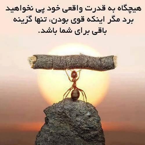 هیچگاه به قدرت واقعی خود پی نخواهید برد، مگر اینکه قوی بودن، تنها گزینه باقی برای شما باشد